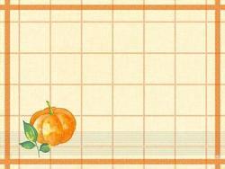 duni_papier-tischsets_fuer_die_gastronomie