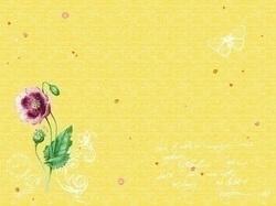 duni_dunicel_tischsets_30_x_40_cm-_spring_lilies