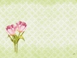 duni_dunicel_tischsets_30_x_40_cm-_love_tulips