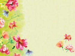 papier-tischsets_30_x_40_cm-_garden_joy