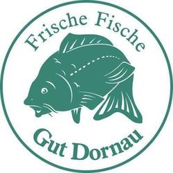 bachforellen_filet_10-15_dag_