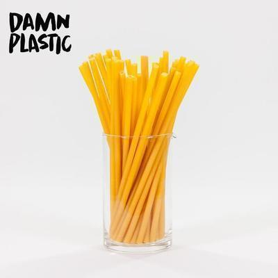 stroodles_by_damnplastic_1125_stk