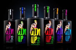 GinUp - Alpin Dry Gin 47% Vol. 0,5 l, AT